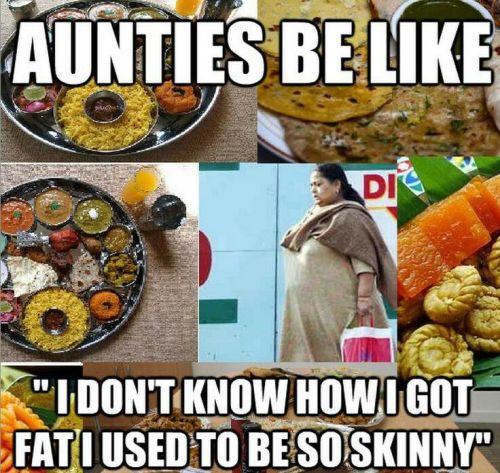 fat aunty skinny auntry