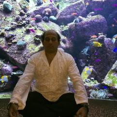 Dr. Yogesh Kodkani