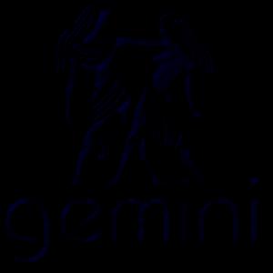 gemini 2017