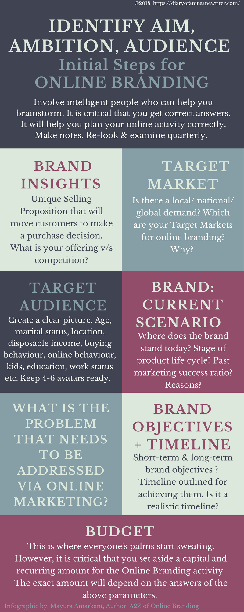 Infographic on Audience Aim and Ambition for Online Branding