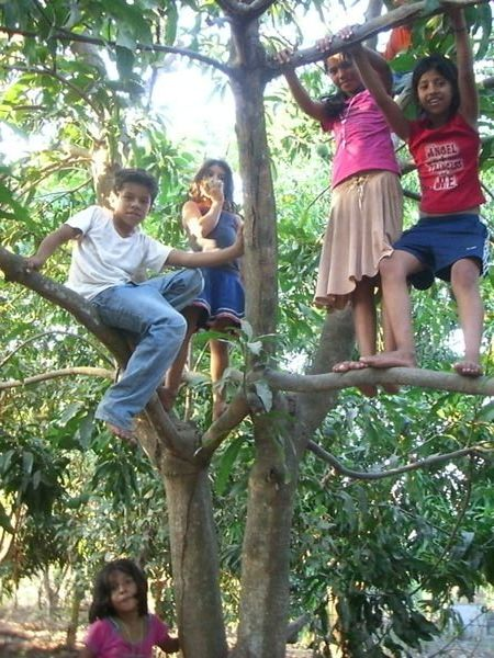 Healthy kids with outdoor play