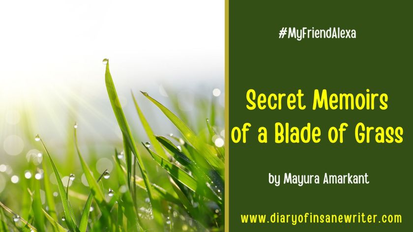 Short story about a blade of grass - fiction
